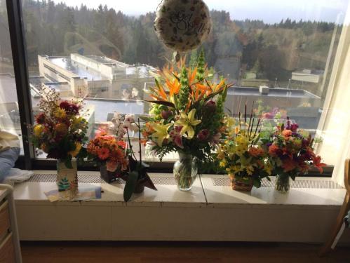 Spectacular Flowers!
